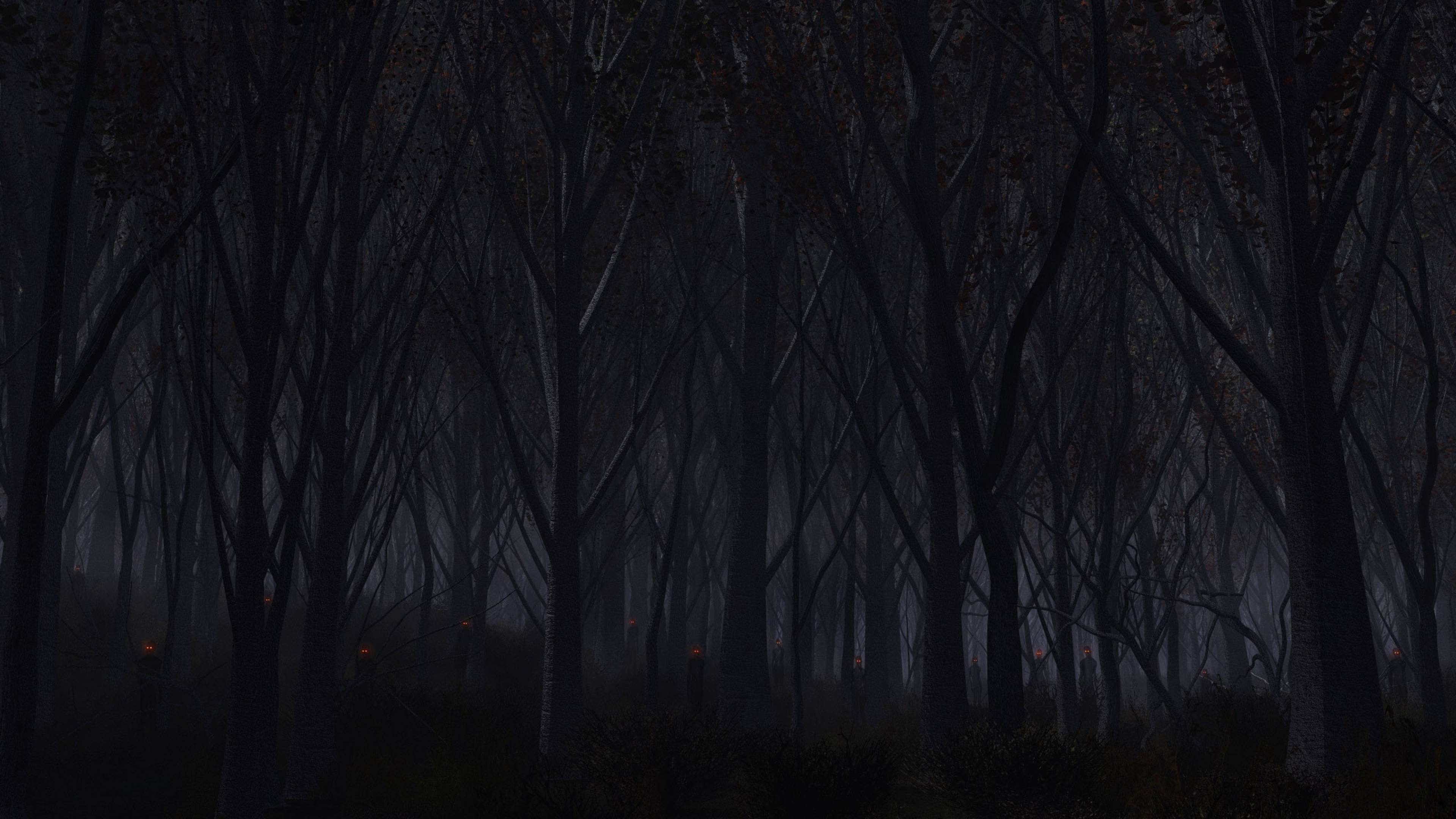 Dark Forest Wallpapers Phone Is Cool Wallpapers