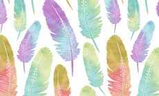 Feather Tumblr Wallpaper Is Cool Wallpapers