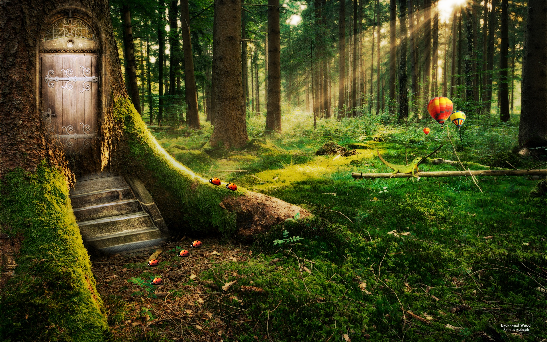 Forest Wallpapers High Definition Is Cool Wallpapers
