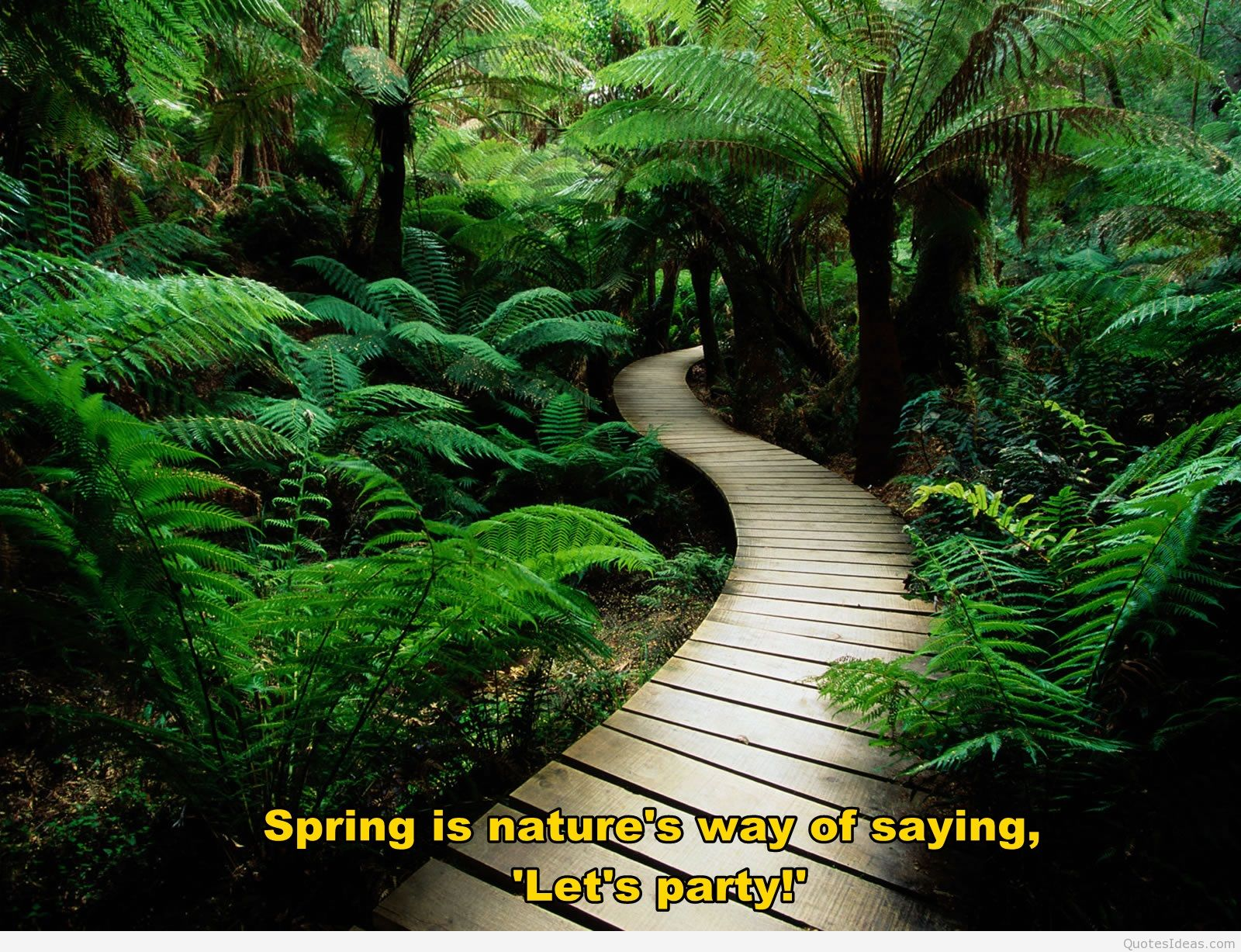 Nice Nature S With Quotes Wallpapers For Iphone