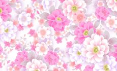 Pink Flower Designs Wallpapers High Resolution Is Cool Wallpapers
