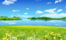 Summer Nature Wallpaper Phone Is Cool Wallpapers