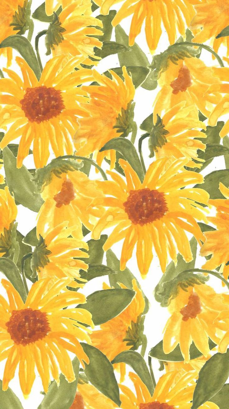 Sunflower Wallpapers High Resolution Is Cool Wallpapers