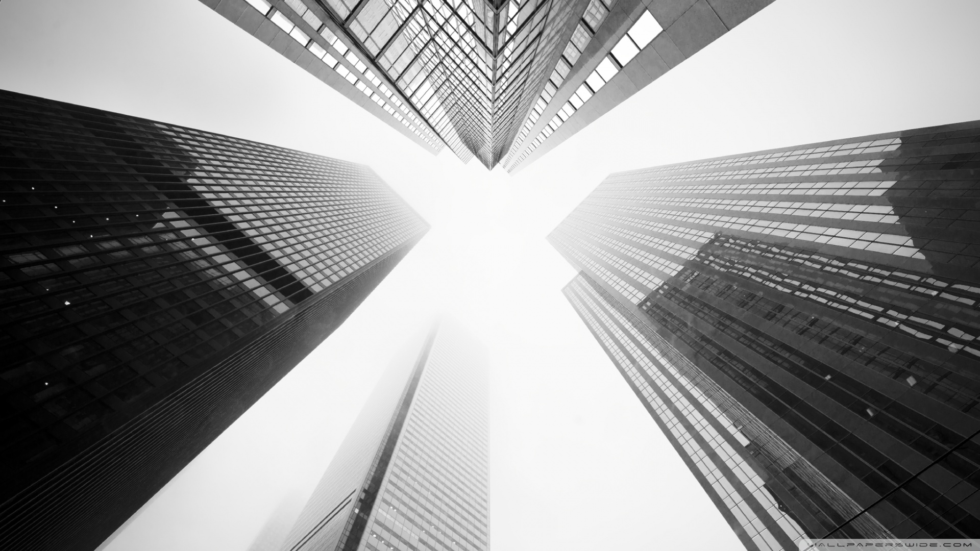 Toronto Black And White Wallpapers For Android Is Cool Wallpapers