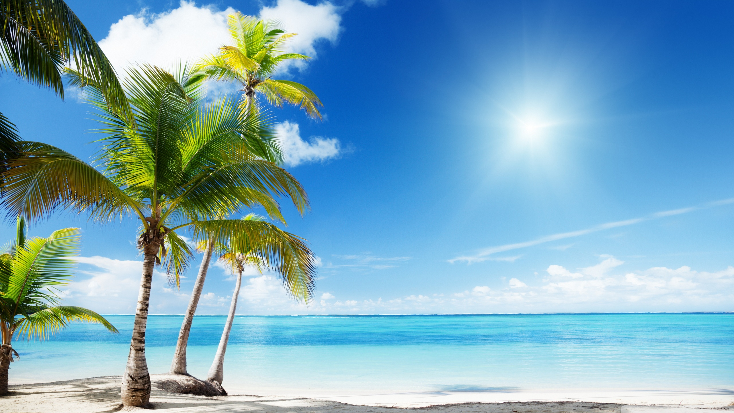 Tropical Beach Wallpapers Full Hd Is Cool Wallpapers