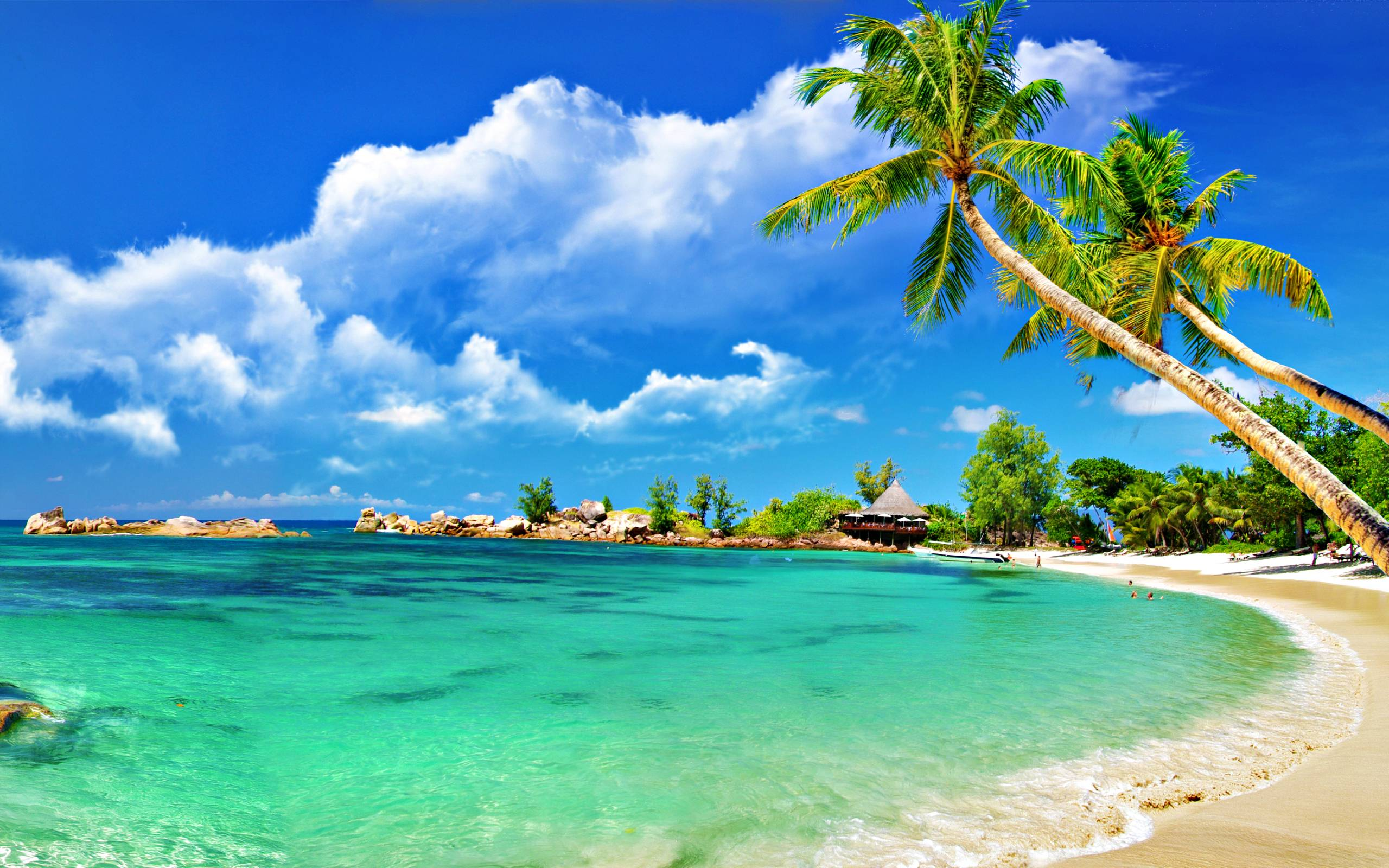 Tropical Beach Wallpapers Picture Is Cool Wallpapers