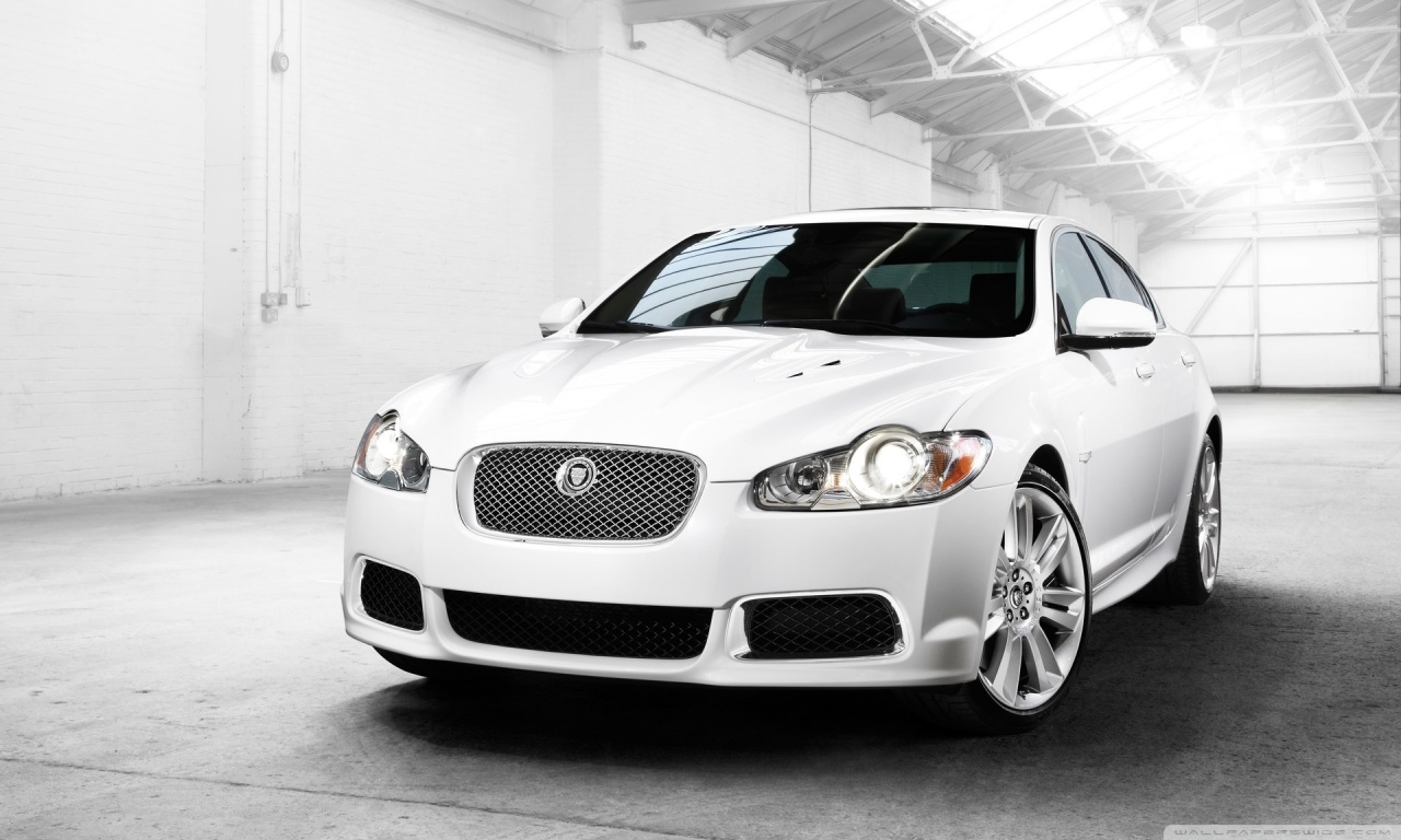 White Jaguar Car Wallpaper Phone Is Cool Wallpapers