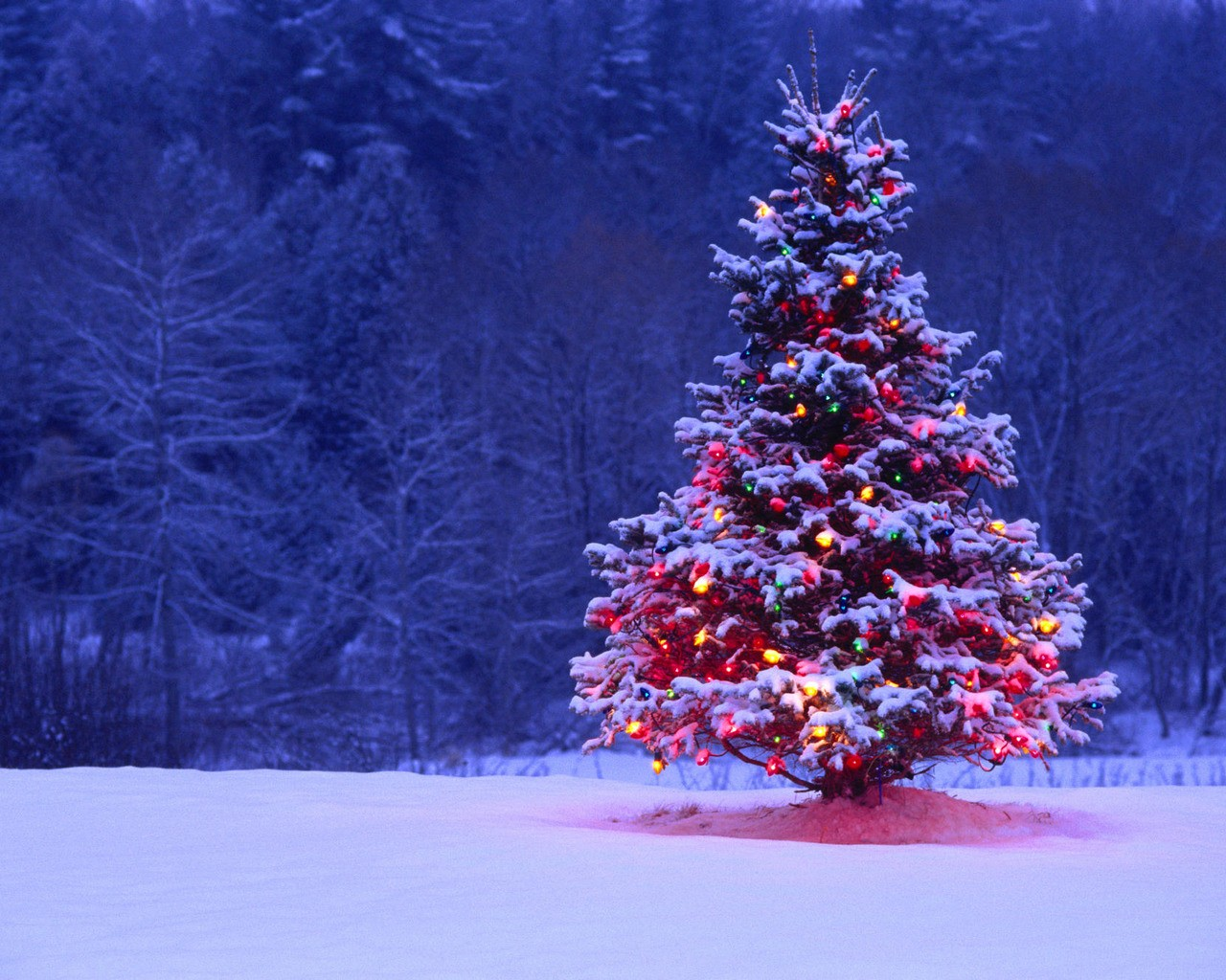Winter Christmas Backgrounds Is Cool Wallpapers