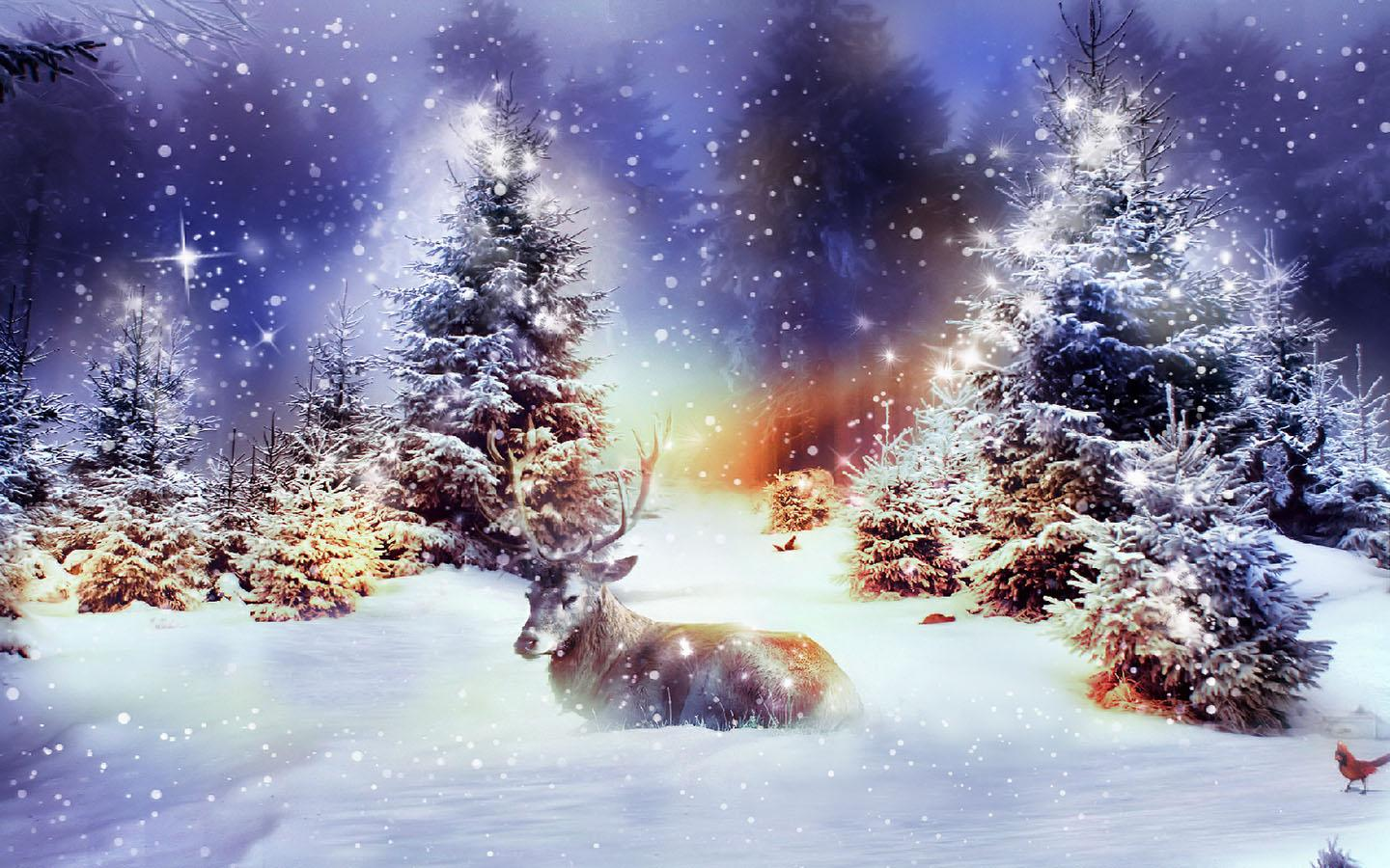 winter christmas wallpaper hd resolution