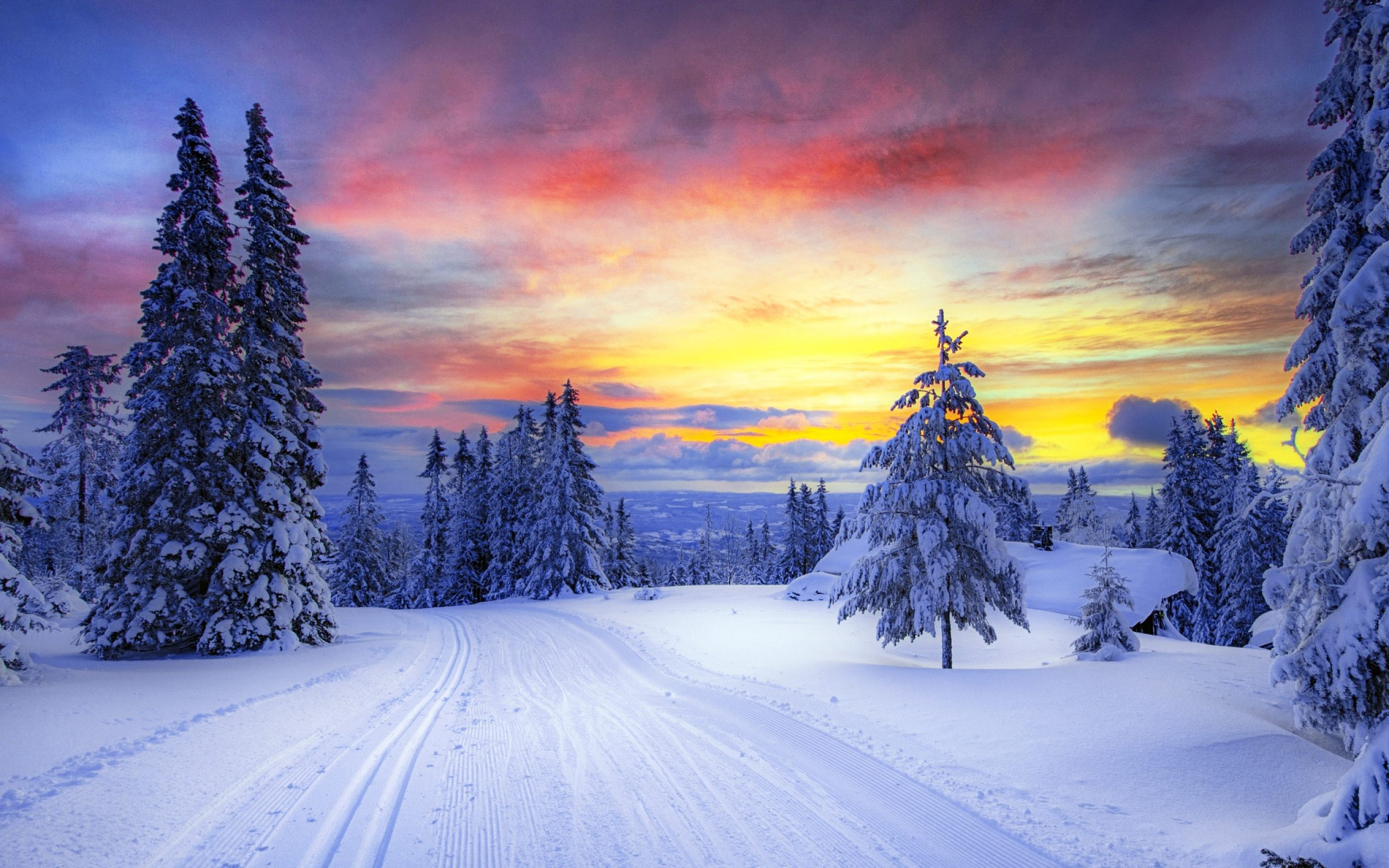 Winter Wallpaper Background Is Cool Wallpapers