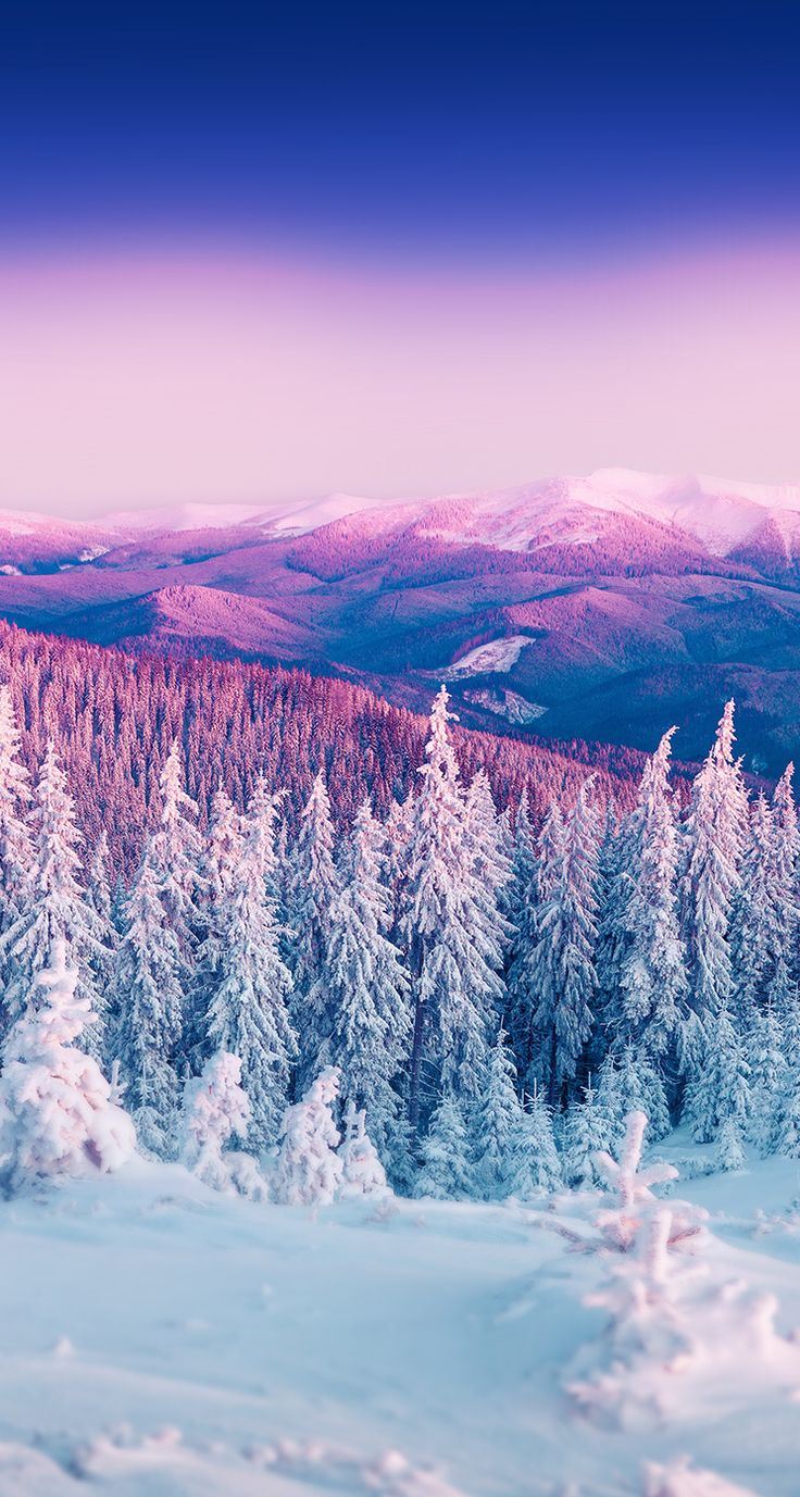 Winter Wallpapers Picture Is Cool Wallpapers