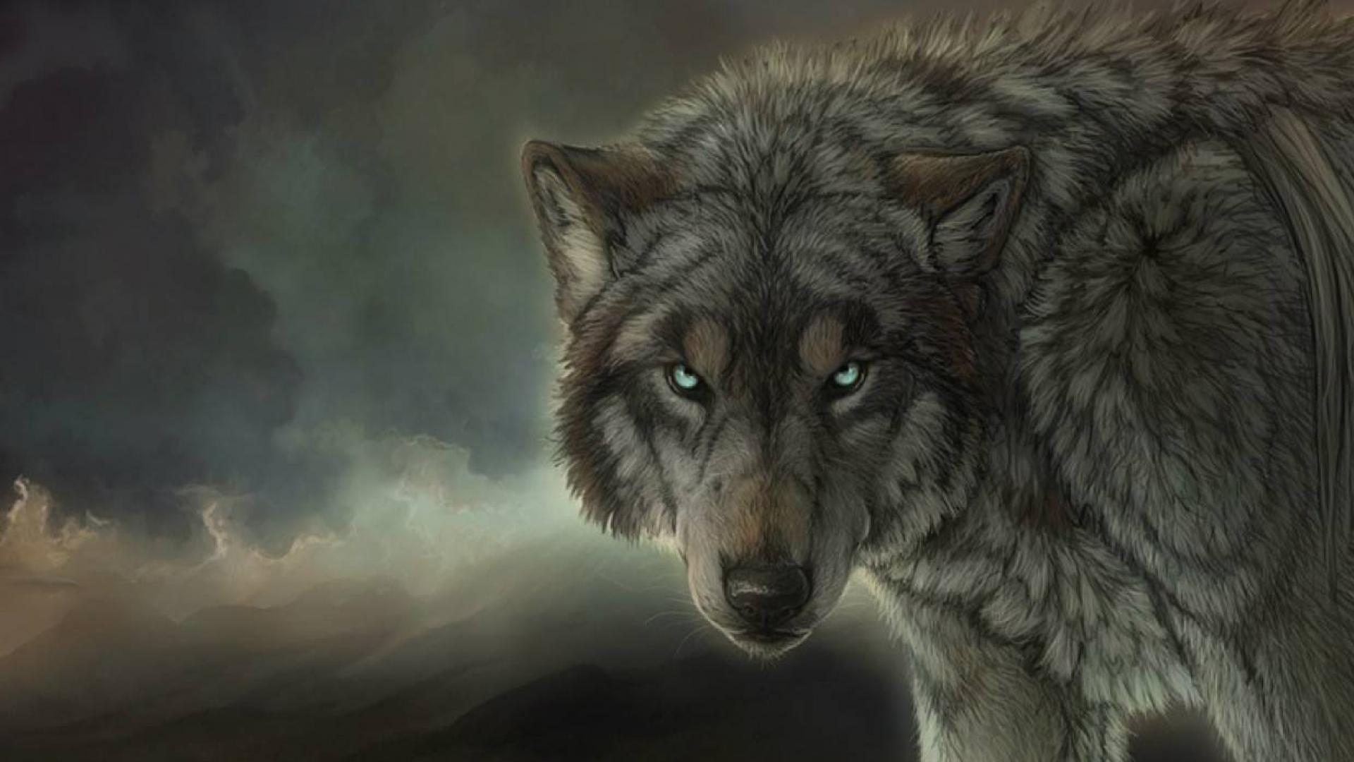 Download Wolf Wallpaper Images Is Cool Wallpapers