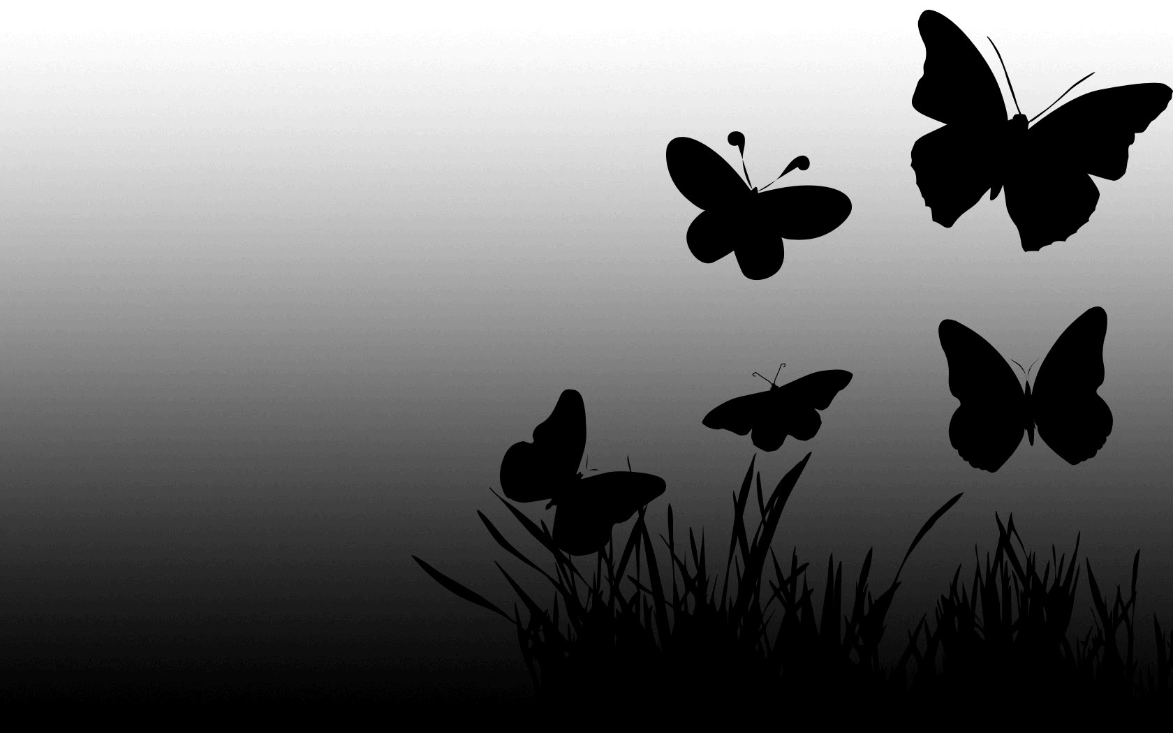 Black And Red Butterfly Wallpaper Picture Is Cool Wallpapers