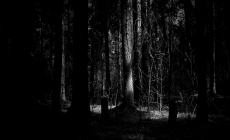 Dark Wood Wallpapers Hd Is Cool Wallpapers