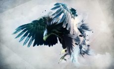 Eagle Wallpaper Picture Is Cool Wallpapers