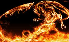 Fire Dragon S 3d Wallpaper Free Is Cool Wallpapers