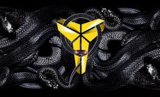 Kobe Bryant Wallpaper Photo Is Cool Wallpapers