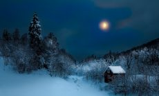 Snow Night Wallpaper Is Cool Wallpapers