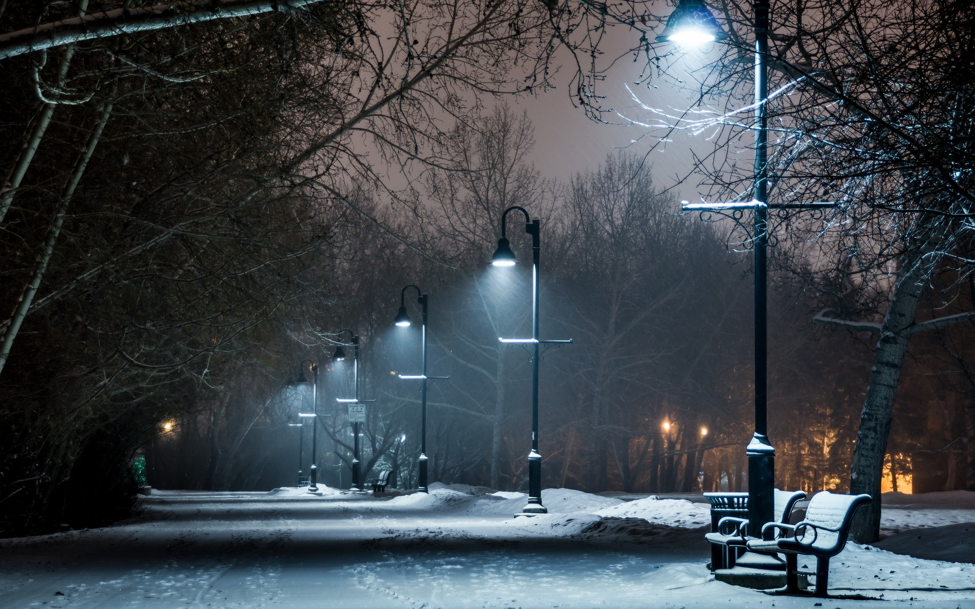 Snow Night Wallpaper Desktop Is Cool Wallpapers