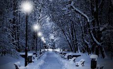 Snow Night Wallpaper Mobile Is Cool Wallpapers