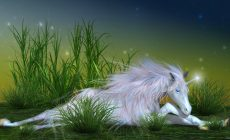 Unicorn Wallpapers High Quality Is Cool Wallpapers