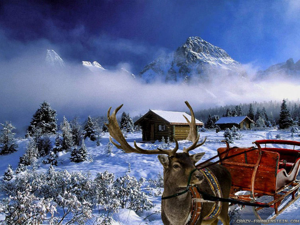 Winter Christmas Wallpapers Widescreen Is Cool Wallpapers