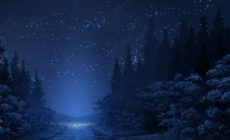Winter Night Background Is Cool Wallpapers