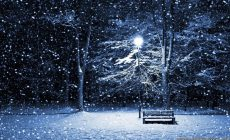 Winter Night Wallpaper For Android Is Cool Wallpapers
