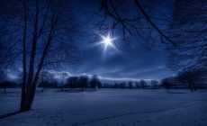 Winter Night Wallpaper Hd Is Cool Wallpapers