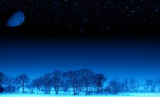 Winter Night Wallpaper Phone Is Cool Wallpapers
