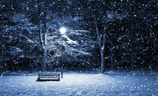 Winter Night Wallpaper Wide Is Cool Wallpapers