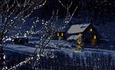 Winter Night Wallpapers Images Is Cool Wallpapers