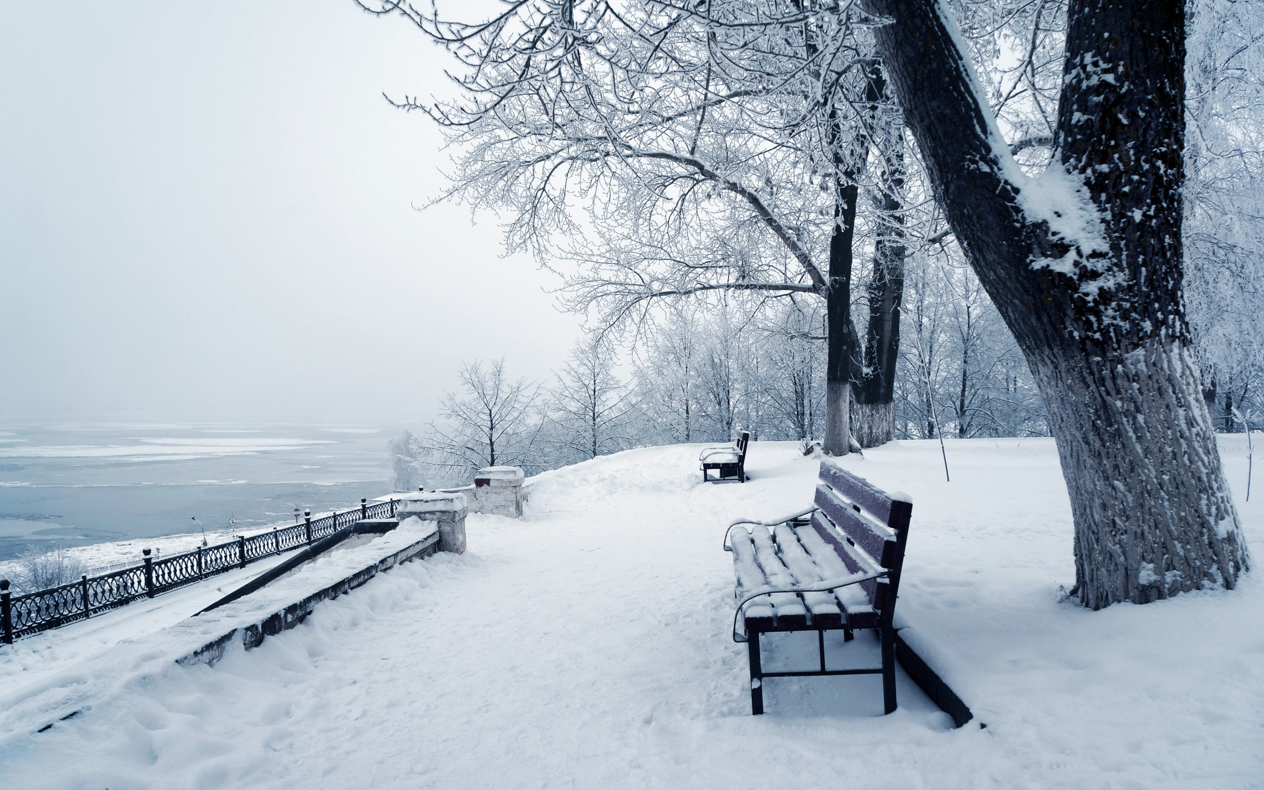 Winter Wallpaper High Quality Resolution Is Cool Wallpapers
