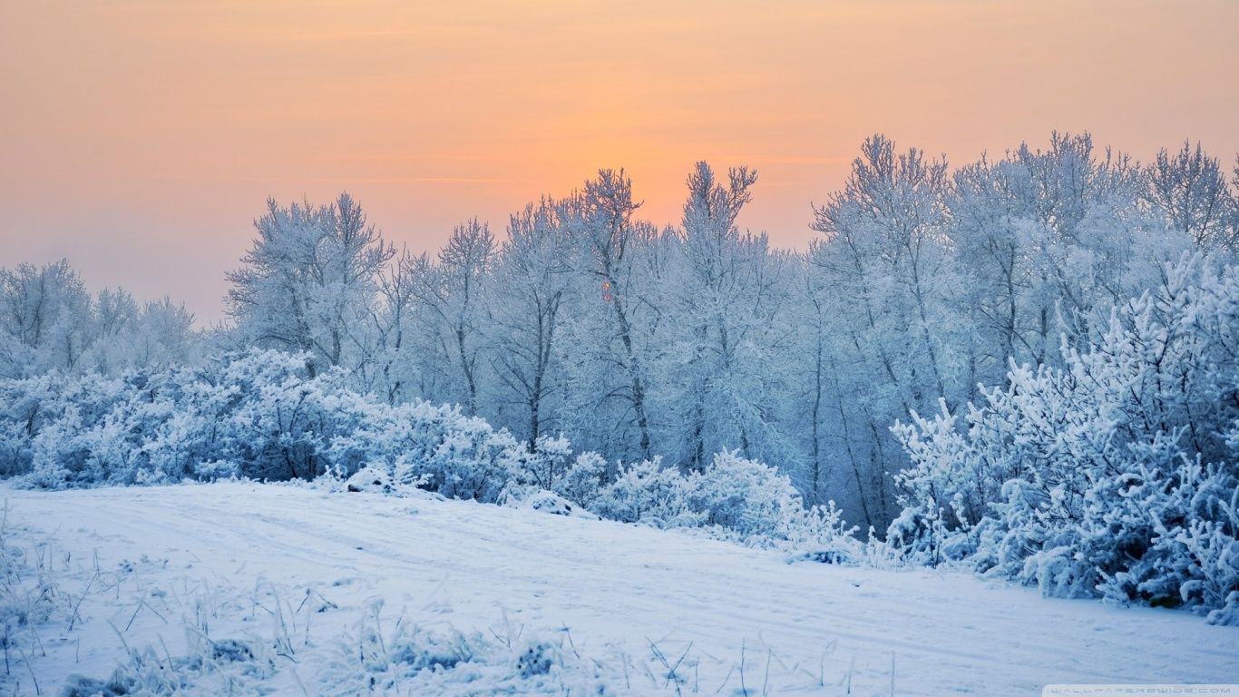 Winter Wallpapers 1080p Is Cool Wallpapers