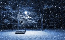 Winter Widescreen Wallpaper Free Is Cool Wallpapers