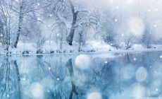 Winter Widescreen Wallpaper Hd Is Cool Wallpapers