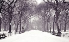 Winter Widescreen Wallpapers High Definition Is Cool Wallpapers