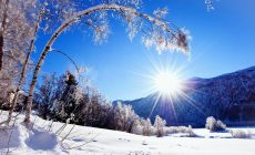 Winter Widescreen Wallpapers Phone Is Cool Wallpapers