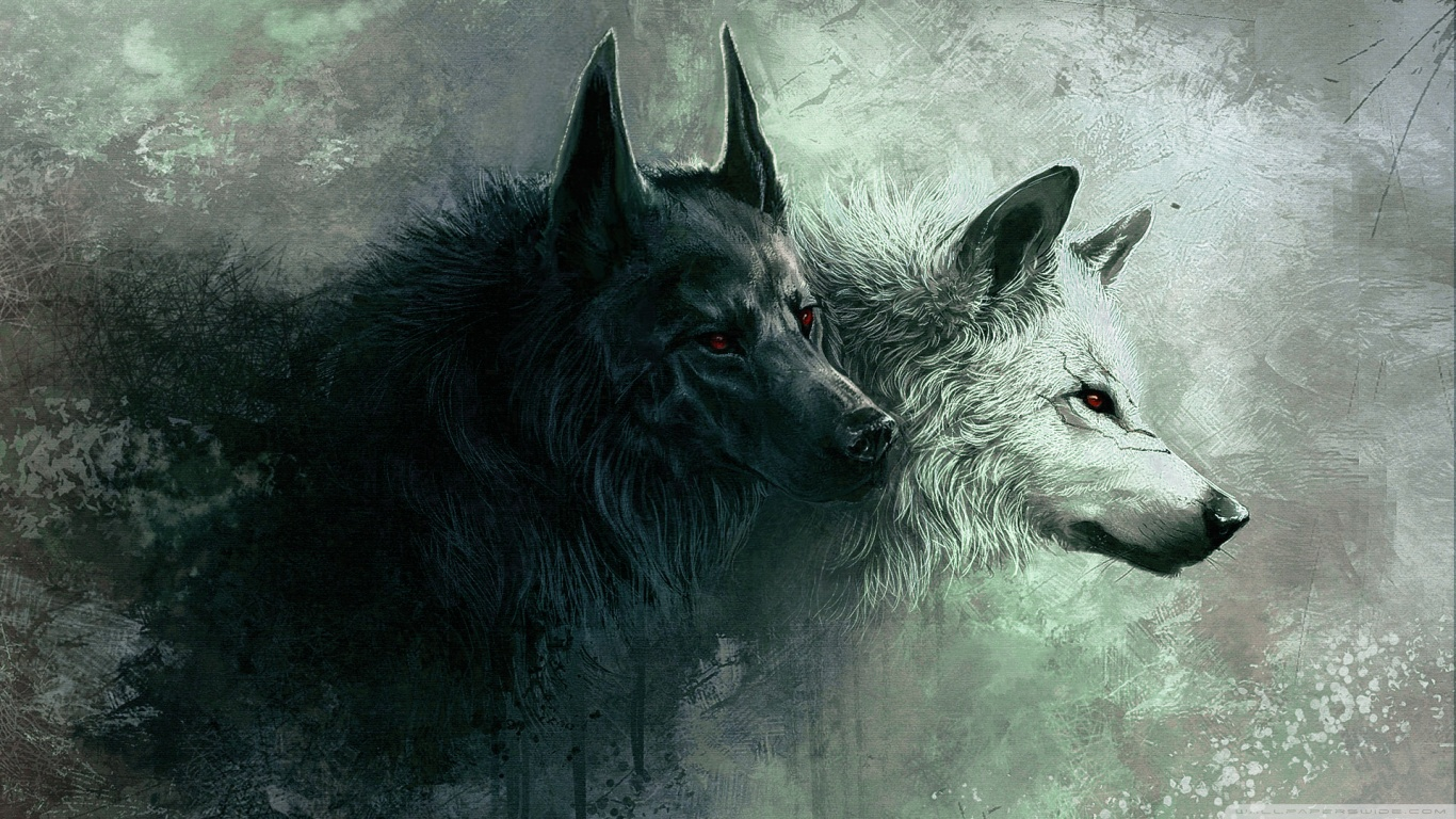 Wolf Wallpapers Desktop Is Cool Wallpapers