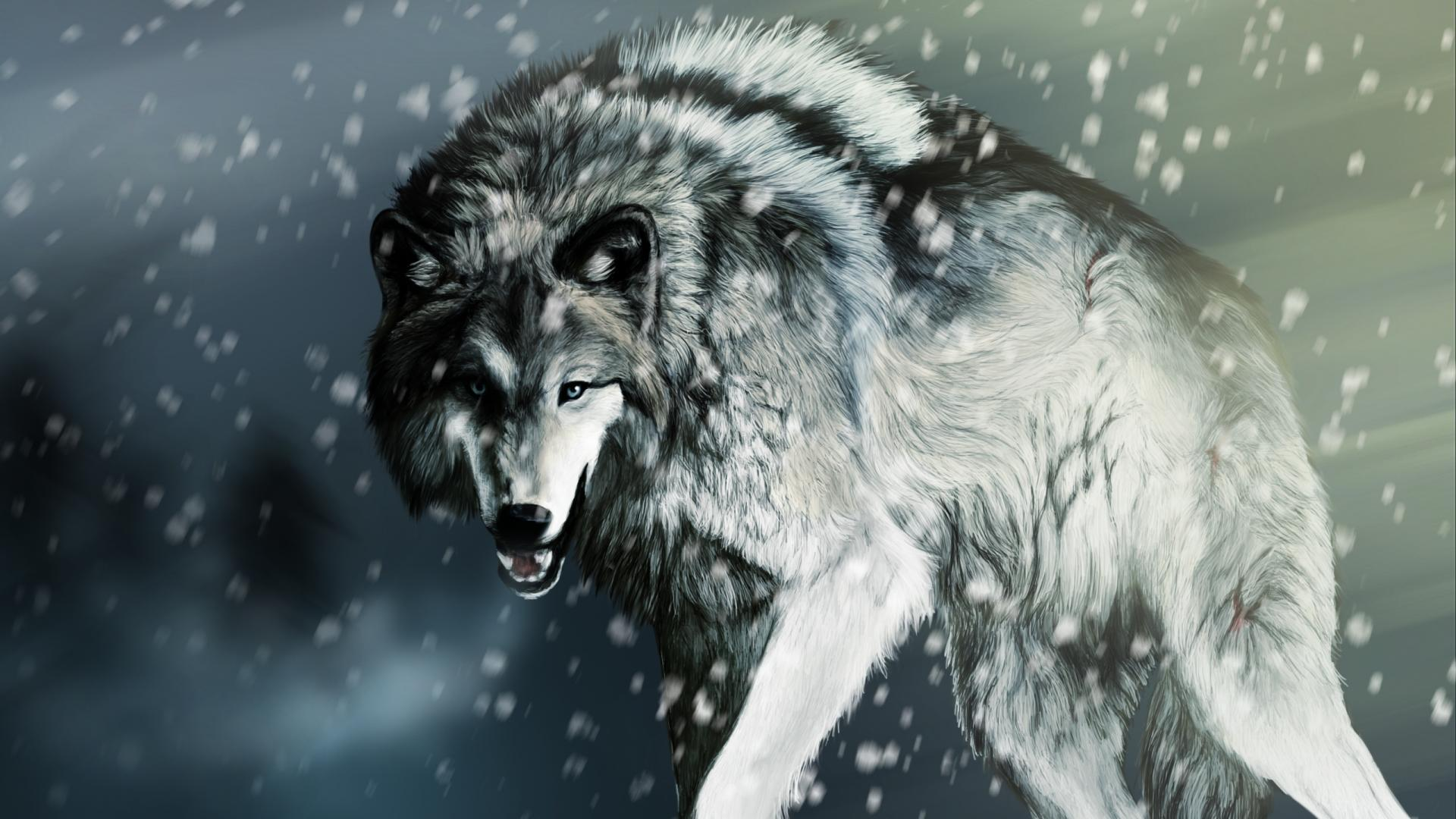 Wolf Wallpapers For Android Is Cool Wallpapers